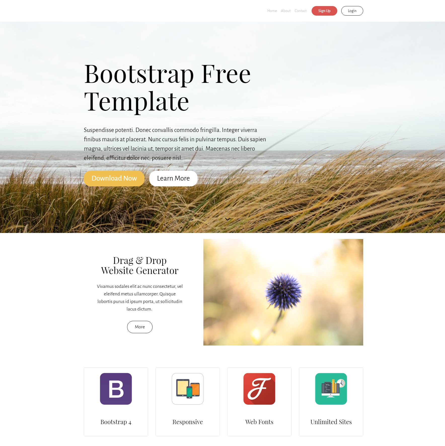 HTML5 Bootstrap PurityM Templates